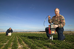 Agronomist (right) uses a neutron probe as technician uses time domain reflectometry to assess soil water used by winter wheat in an alternative crop rotation study: Click here for full photo caption.