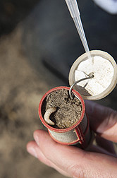 A chamber used in an underground field test of nematode attractants: Click here for full photo caption.