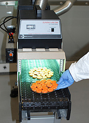 Pilot scale UV-B treatment of carrot slices at ARS's Western Regional Research Center: Click here for photo caption.