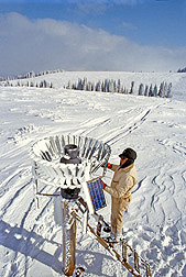 A technician examines the snowfall collected in a precipitation gauge on the solar-powered telemetry system at the Reynolds Creek Watershed: Click here for photo caption.