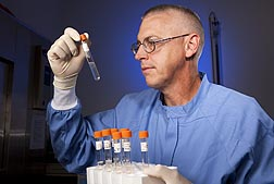 Technician Rick Hornsby of the Infectious Bacterial Diseases Research Unit examines culture medium for cloudiness, which indicates growth of Leptospira bacteria: Click here for photo caption.