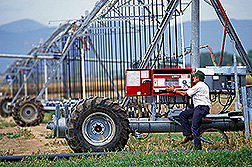Agricultural engineer Harold Duke sets up an automated sprinkler irrigation system. Click here for full photo caption.