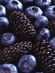 Blueberries and blackberries: Link to photo information