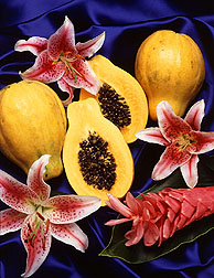 Photo: Hawaiian papayas, Carica papaya. Link to photo information