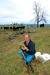 Agronomist David P. Belesky collects tall fescue samples from a pasture.