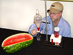 Technician extracts lycopene from watermelon: Click here for full photo caption.