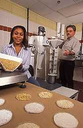 Jhanel Wilson and Rolando Flores mill barley kernels into starch-enriched and low-starch fractions. Link to photo information
