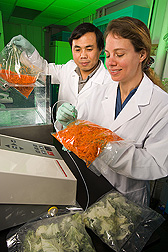 Technician samples modified atmosphere in packages of shredded carrots and fresh-cut Salad Savoy while visiting scientist tests packages for leaks: Click here for full photo caption.