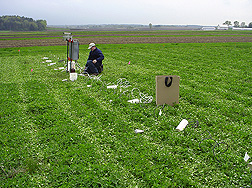ARS technician installs soil moisture monitoring equipment in a kura clover living mulch experiment at a University of Wisconsin research farm in Arlington, Wisconsin: Click here for full photo caption.