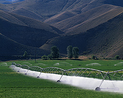 Since, globally, irrigation for growing food is one of the biggest users of fresh water, ARS scientists are developing high-tech farming systems that will conserve both water and fertilizer: Click here for full photo caption.