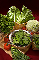 Produce and leafy greens in the photo are (clockwise from top): romaine lettuce, cabbage, cilantro in a bed of broccoli sprouts, spinach and other leafy greens, green onions, tomatoes, and green leaf lettuce: Click here for full photo caption.