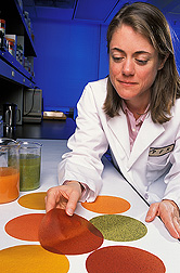 Research leader of the ARS Processed Foods Research Unit in Albany, California, examines colorful fruit- and vegetable-based edible films: Click here for full photo caption.