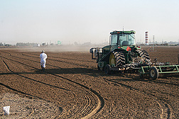 At an experimental site near Bakersfield, California, a tractor injects fumigants 46 centimeters deep into the soil while technician walks along the field and places boundary markers to identify the area of treated soil: Click here for full photo caption.