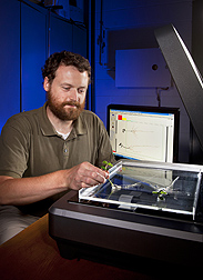Technician G. John Lazur (formerly with ARS) scans soybean root with winRHIZO software to digitize root growth: Click here for photo caption.