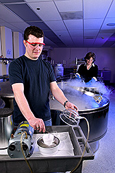 Technician Remi Bonnart (foreground) flash-freezes plant shoot tips while plant physiologist Christina Walters places cryopreserved materials into cryovats for long-term storage: Click here for photo caption.
