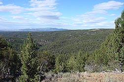 A view from Juniper Mountain, looking toward South Mountain, shows a landscape heavily populated with invasive western juniper trees: Click here for photo caption.