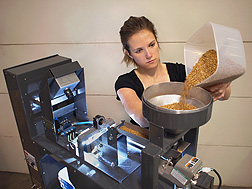 Biological science aide Anne Berry puts wheat in the hopper of a color-image sorter: Click here for full photo caption.