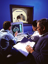 Scientists examine a cross-sectional magnetic resonance image from the abdominal area of a pig. Click here for full photo caption.