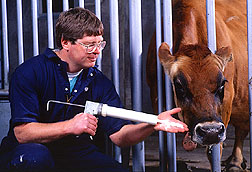 Veterinary medical officer Jesse Goff