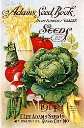 Adams Seed Book 1914.