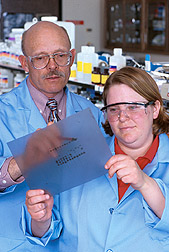Microbiologist and student examine autoradiographic film showing bluetongue virus proteins. Click here for full photo caption.