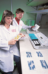 Two technicians conduct a CI-ELISA: Click here for full photo caption.