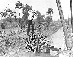 Plant explorer on a waterwheel: Click here for full photo caption.