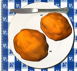 Two dimensional drawing of food on a plate: Click here for full photo caption.