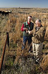 Bob Gillen y Phillip Sims examinan especies de plantas en un área encerrada para su  investigación. Enlace a la información en inglés sobre la foto