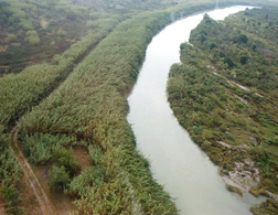 The Rio Grande from a Border Patrol helicopter near Del Rio, Texas: Click here for full photo caption.