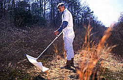 Entomologist uses a tick sweep device.