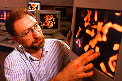 Joe Anderson examines chromosomes of a BYDV-resistant...