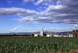 Farmland with agricultural buildings