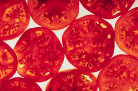 Photo: Tomato slices. Link to photo information