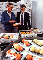 Photo: President of PRE-PEELED, Inc. and ARS chemist examining a package of oranges that are already peeled
