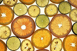 Citrus fruits.