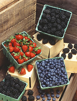 Photo: Display of fresh blackberries, strawberries and blueberries. Link to photo information