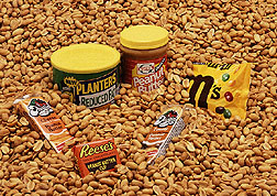 Peanuts and popular processed peanut foods. Link to photo information