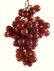 Photo: Sweet, juicy grapes, picked a the peak of ripeness, are one of nature's best-tasting treats. Link to photo information
