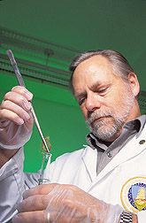 Chemist prepares a hair specimen: Click here for full photo caption.
