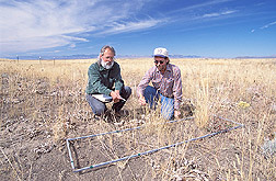Rangeland scientist and range science technician record types of vegetation: Click here for full photo caption.