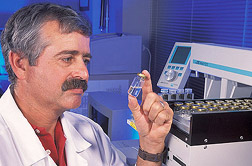 Chemist examines distilled steam concentrates from catfish fillets: Click here for full photo caption.