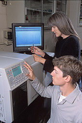 Researcher assists entomologist with a gas chromatography/mass spectroscopy procedure: Click here for full photo caption.