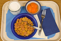 Refined rice cereal, milk, and canned apricots: Click here for full photo caption.