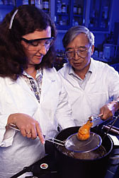 Biochemist and chemist demonstrate the fried chicken coating made from low-fat-uptake rice flour batter: Click here for full photo caption.