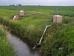 The computer model RZWQM2 has been used extensively to measure effects of management on surface runoff, tile flow, and water quality from cornfields like this in the Midwest: Click here for photo caption.