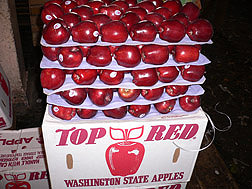 Washington State apples ready for shipment: Click here for photo caption.
