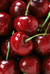 Bing cherries: Click here for full photo caption.