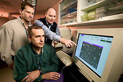 Computer-assisted sperm analysis facilitates evaluation of Hog Island ram samples by technician (left), physiologist (center), and geneticist: Click here for full photo caption.