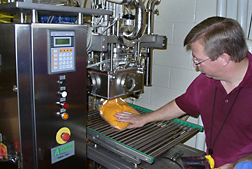 Plant coordinator oversees the testing of aseptic packaging of sweetpotato puree using rapid microwave processing: Click here for full photo caption.